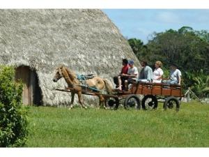 Reserva Ecológica Volta Velha