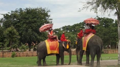 Os elefantes são animais muito importantes em toda a história do Sudeste Asiático. Em Ayutthaya, foram a força que possibilitaram a construção de templos tão grandiosos.