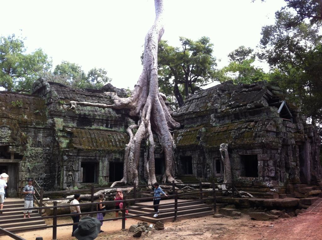 Templo de Ta Prohm um dos mais pitorescos do complexo, foi construído pelo Rei Jayavarman VII e dedicado a sua mãe em honra a Prajnaparamita a deusa da sabedoria no Budismo.