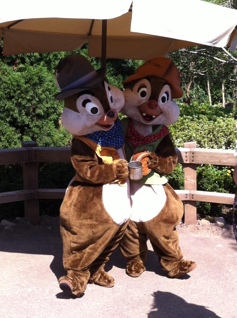Tico e Teco fazendo a festa no parque.