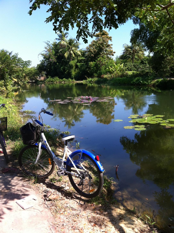 Agradável passeio de bike pelos arredores da escola.