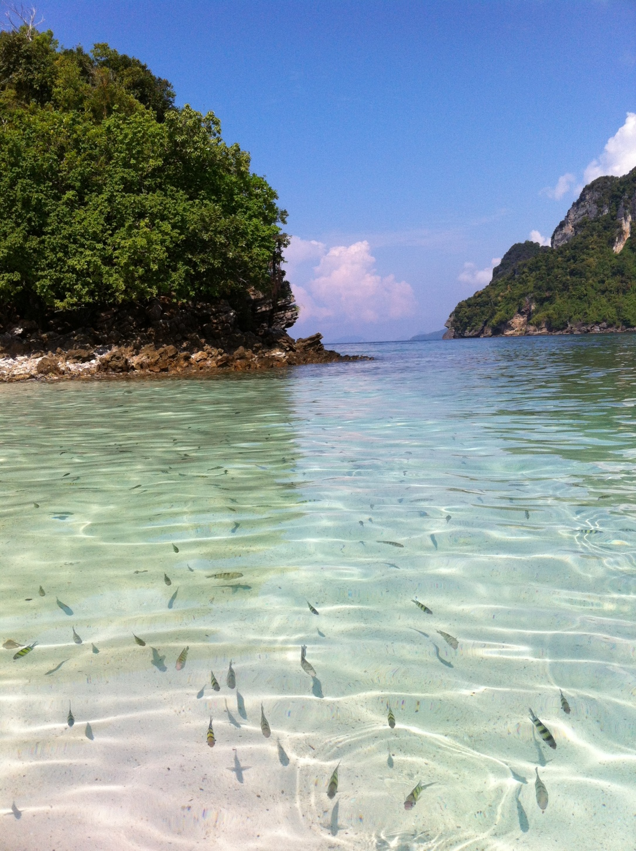 Como não se encantar com essa paisagem e nadar com os peixinhos (Tup Island)