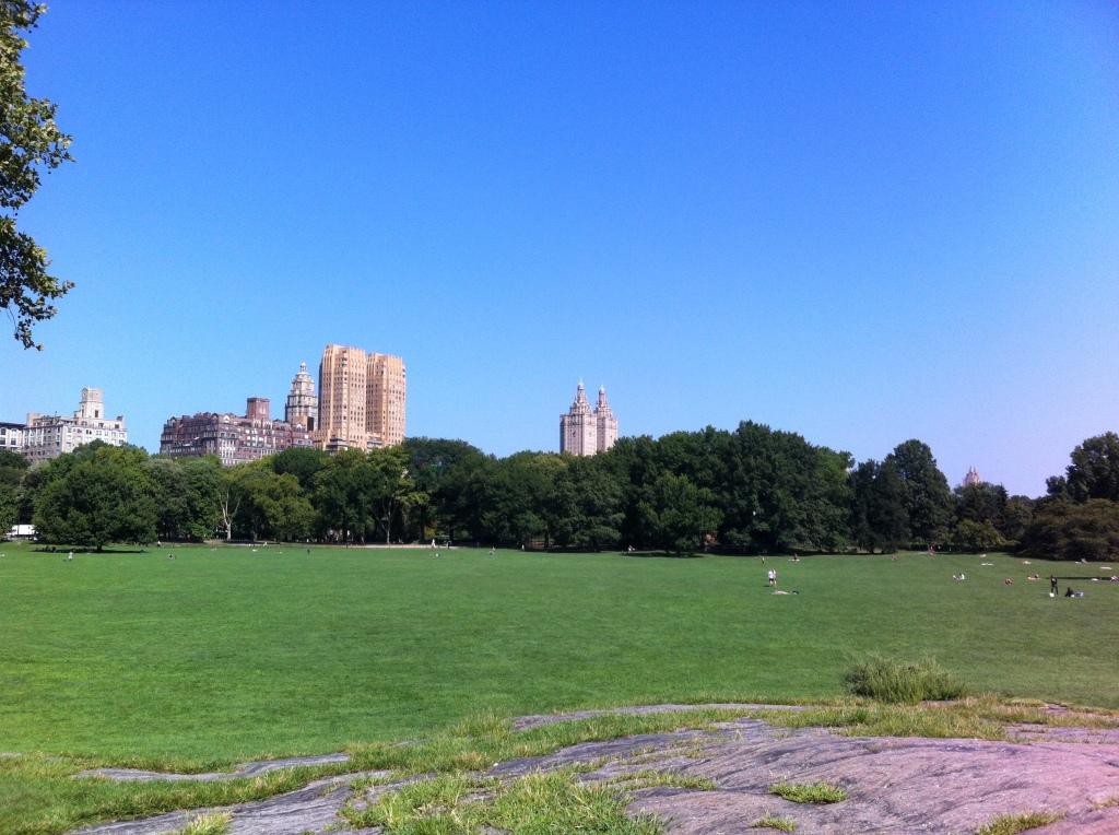 Um cantinho do Central Park.
