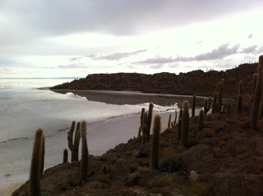 Ilha de Incahuasi
